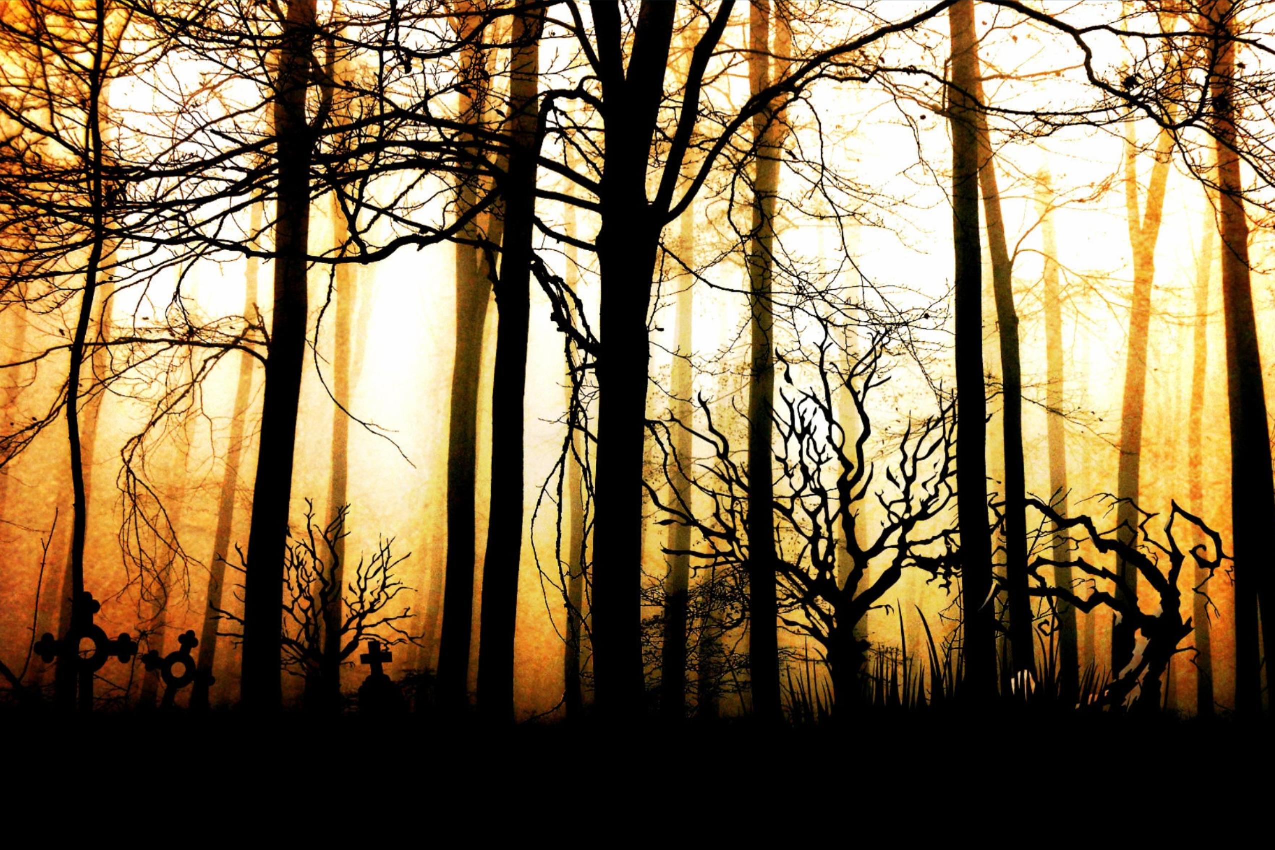 haunted houses in nashville | creepy woods