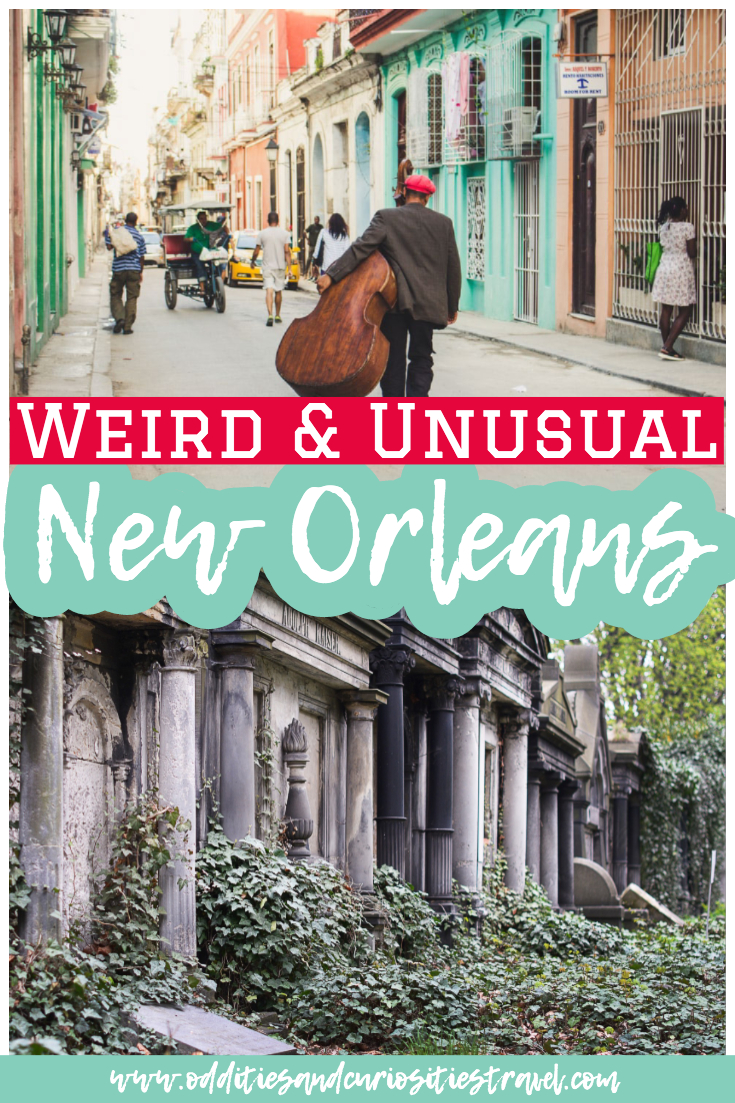 weird things to do in new orleans
