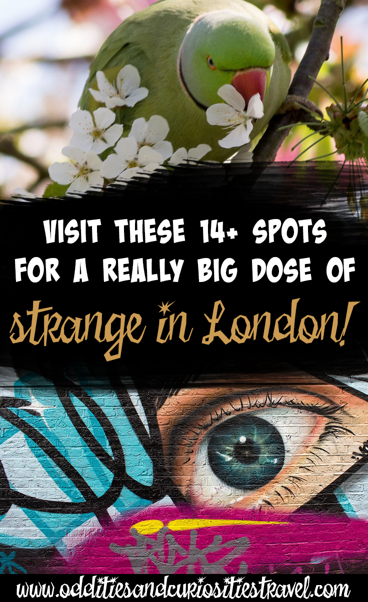 weird things to do in london